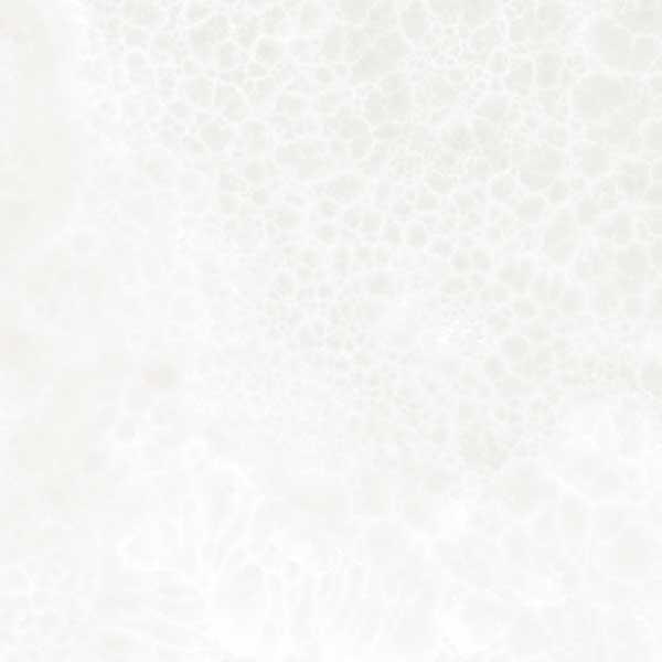 Haydn-white-tile-opt-2